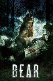 Niedźwiedź CDA