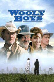 Wooly Boys CDA