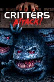 Crittersi atakują CDA