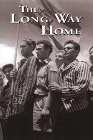 The Long Way Home CDA