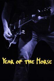 Year of the Horse CDA