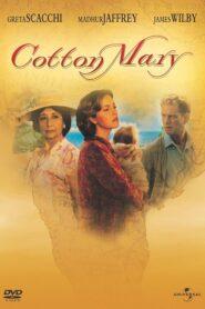 Cotton Mary CDA