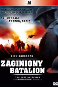 Zaginiony Batalion CDA